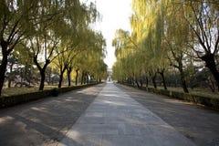 Il modo sacro delle tombe di Ming Fotografia Stock