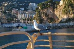Il Monaco, Di Monaco di Principato immagini stock