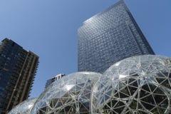 Il mondo di Amazon acquartiera il giorno soleggiato con la torre del condominio Fotografia Stock Libera da Diritti