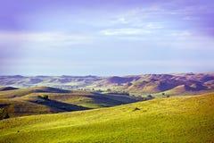 Il Montana orientale Immagine Stock