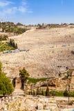 Il monte degli Ulivi ed il vecchio cimitero ebreo a Gerusalemme, Israele Immagine Stock Libera da Diritti