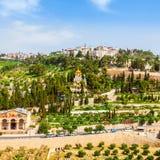 Il monte degli Ulivi ed il vecchio cimitero ebreo a Gerusalemme, Israele Fotografia Stock