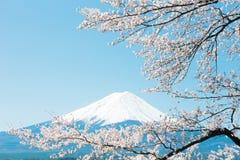Il monte Fuji Fotografie Stock