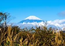 Il monte Fuji Immagine Stock Libera da Diritti