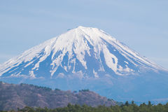 Il monte Fuji dal lago Saiko in primavera Immagine Stock Libera da Diritti