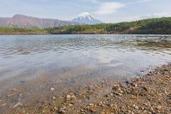 Il monte Fuji dal lago Saiko in primavera Fotografie Stock