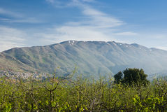 Il Monte Hermon nell'Israele del Nord Immagine Stock
