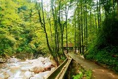 Il monte Qincheng fotografia stock libera da diritti