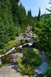 Il monte Rainier, cascata della traccia dell'orizzonte, fiume di paradiso Fotografia Stock