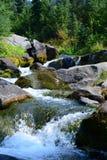 Il monte Rainier, cascata della traccia dell'orizzonte, fiume di paradiso Fotografie Stock