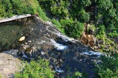 Il monte Rainier, cascata di Narada Immagini Stock Libere da Diritti