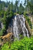 Il monte Rainier, cascata di Narada Fotografia Stock
