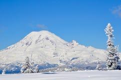 Il monte Rainier come visto dalla cima del passaggio bianco Ski Area, Washington State fotografia stock libera da diritti