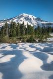 Il monte Rainier con una neve ed alberi nella priorità alta Fotografia Stock