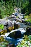 Il monte Rainier, fiume di paradiso, cascata della traccia dell'orizzonte Fotografia Stock