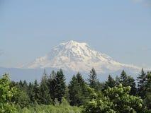 Il monte Rainier Fotografie Stock