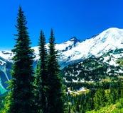 Il monte Rainier a Washington Fotografie Stock Libere da Diritti