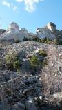 Il monte Rushmore fotografie stock