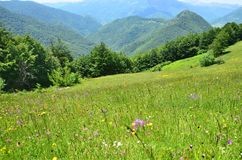 Il Montenegro, alpi di Dinaric di estate Immagini Stock Libere da Diritti
