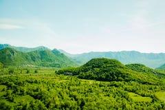 Il Montenegro, lago Skadar Fotografia Stock