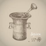 Il mortaio d'annata e la spezia, vector l'illustrazione disegnata a mano Fotografia Stock Libera da Diritti
