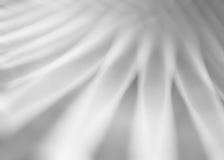 Il mosso in bianco e nero allinea il fondo Fotografie Stock Libere da Diritti