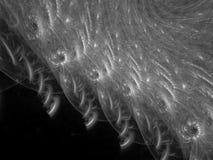 Il moto di turbinio dell'estratto di frattale, rende in bianco e nero di superficie fantastico immagine stock libera da diritti