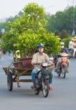 Il motociclista vietnamita guida gli alberi del giardino Fotografia Stock
