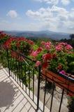 Il Mountain View Fotografia Stock