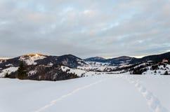 Il Mountain View dell'inverno all'alba di legno recinta la neve, il blu, t verde Fotografia Stock Libera da Diritti