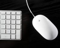 Il mouse bianco e la tastiera fotografia stock