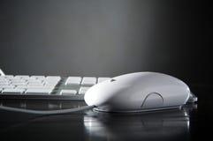 Il mouse bianco e la tastiera fotografie stock