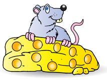 Il mouse grigio mangia il grande formaggio Fotografia Stock Libera da Diritti