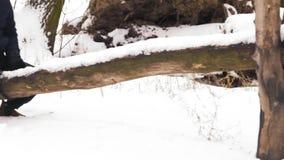 Il movimento lento, uomo indiano guida un'oscillazione di legno nell'inverno nella foresta video d archivio