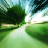 Il movimento rapido zuma dentro foresta Fotografia Stock
