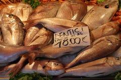 Il mucchio dei pesci al mercato ha allineato sul contro scrittorio per la vendita Immagine Stock
