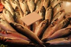 Il mucchio dei pesci al mercato ha allineato sul contro scrittorio per la vendita Fotografie Stock