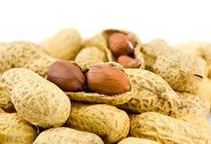 Il mucchio delle arachidi ha isolato Fotografia Stock
