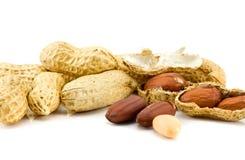 Il mucchio delle arachidi ha isolato immagini stock libere da diritti