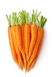 Il mucchio delle carote gradice il grande radice-raccolto Fotografia Stock