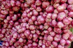 Il mucchio delle cipolle, scalogno è ingrediente Fotografia Stock