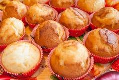 Il muffin delizioso agglutina sul vassoio variopinto Fotografia Stock Libera da Diritti