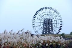 Il mulino a vento Fotografie Stock