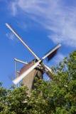 Il mulino a vento di Leida Fotografie Stock Libere da Diritti