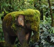 Il muschio ha coperto l'elefante fotografie stock libere da diritti