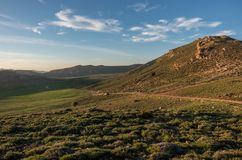 Il muschio ha coperto la valle dell'altopiano nella catena montuosa media dell'atlante nella s Fotografia Stock Libera da Diritti