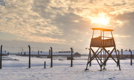 Il museo di Auschwitz-Birkenau Immagine Stock Libera da Diritti