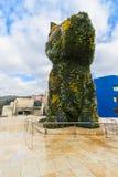 Il museo Guggenheim del cane Fotografie Stock Libere da Diritti