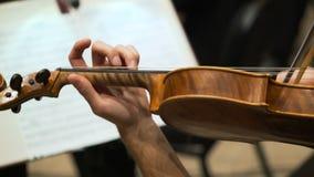Il musicista gioca il violino nella società filarmonica stock footage
