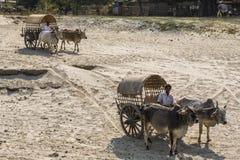 Il Myanmar - un'attesa speciale del taxi vicino al fiume di Irrawaddy immagini stock libere da diritti